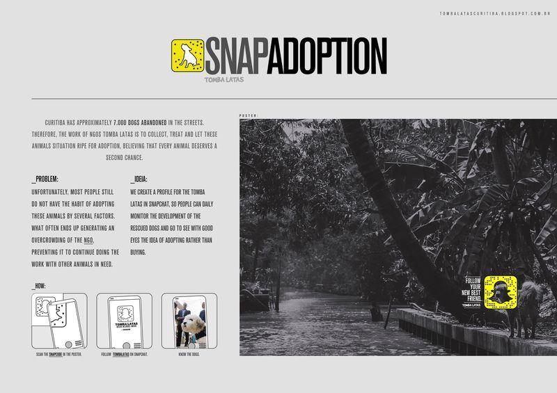 Snapshot Adoption Campaigns
