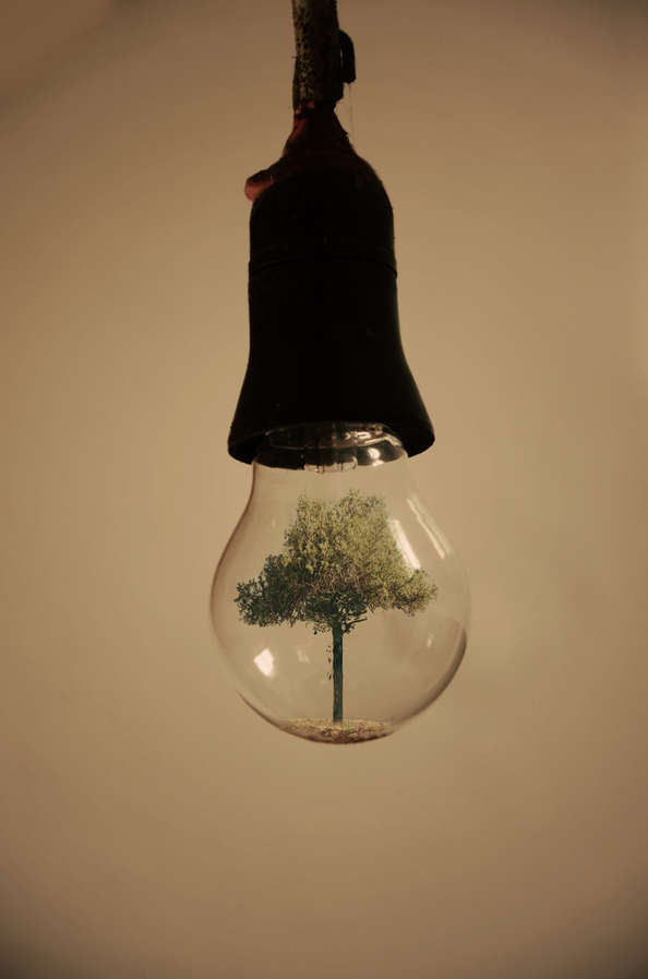Surrealist Lightbulb Art