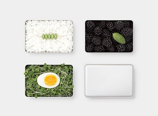 Minimalist Adult Lunch Boxes