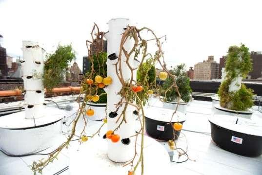 Vertical Gardening Aeroponic Garden