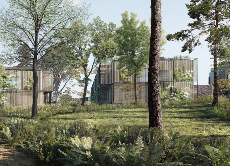 Natural Affordable Housing Concepts