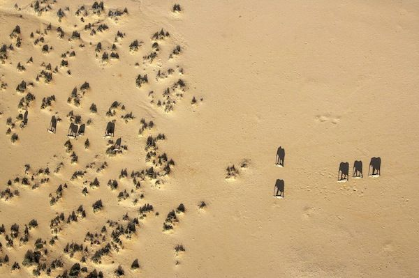 Aerial African Photography