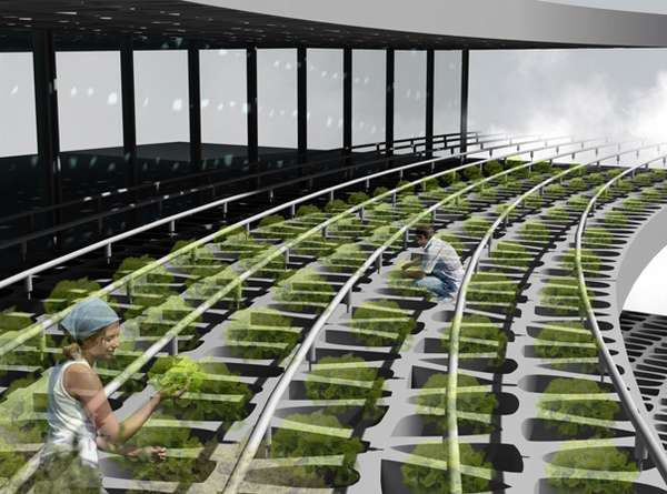 Futuristic City Farms