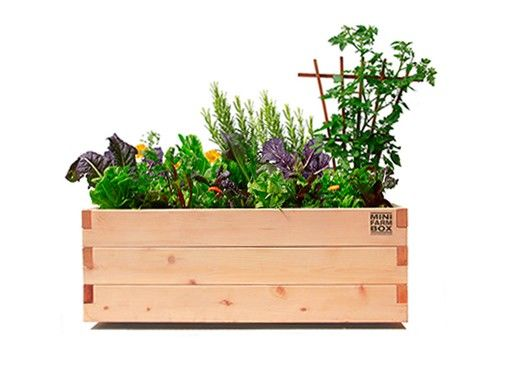 Urban Agriculture Planters