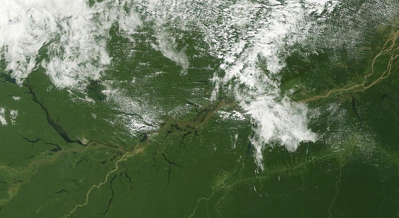 Satellite Deforestation Tracking