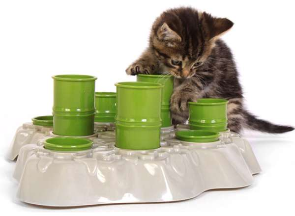 Clustered Kitten Dishes