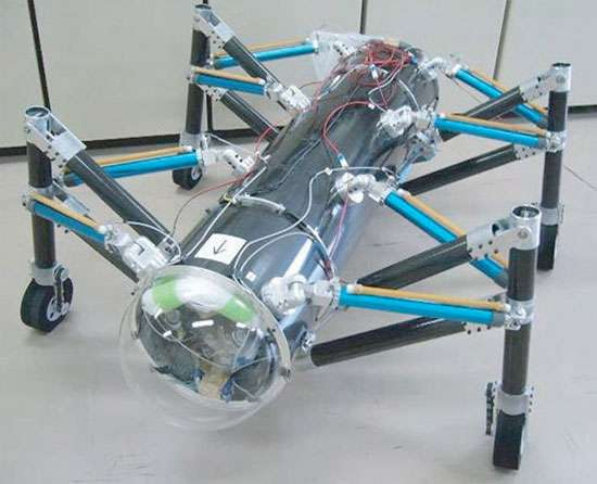 Robotic Grasshoppers