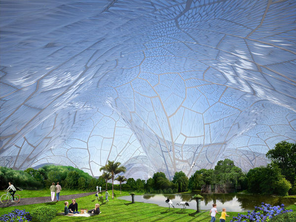 Air Purifying Architecture