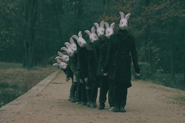 Rabbit-Headed Armies