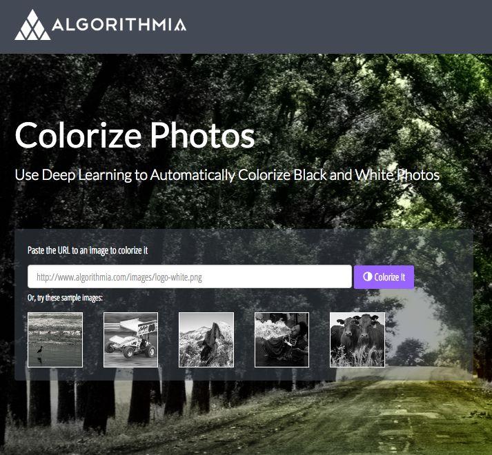 AI Colorization Software