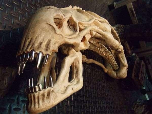 Horror Movie Fossils
