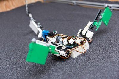 Animal-Mimicking Robots