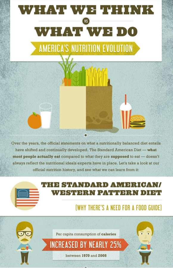 Healthy Diet Infographics : Americas Nutrition Evolution