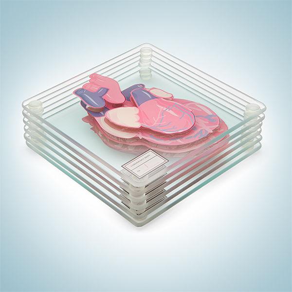 Anatomic Heart Coasters