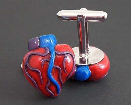 Anatomical Accessories