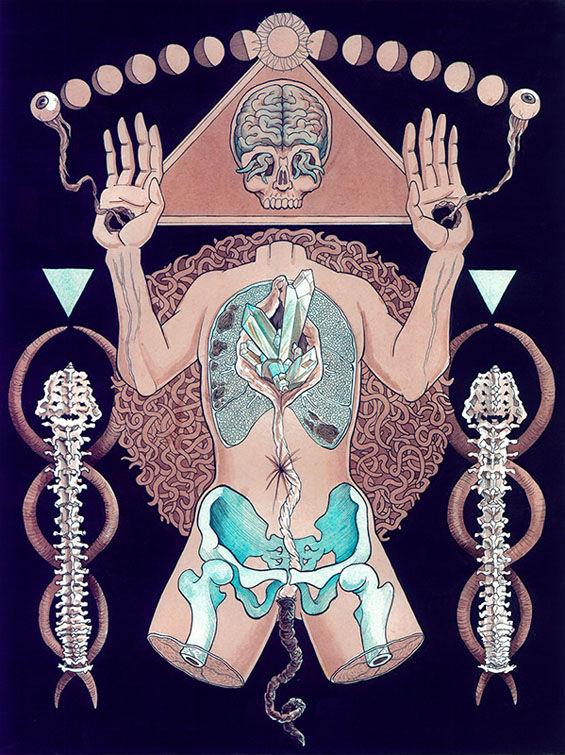 Symbolic Anatomy Art