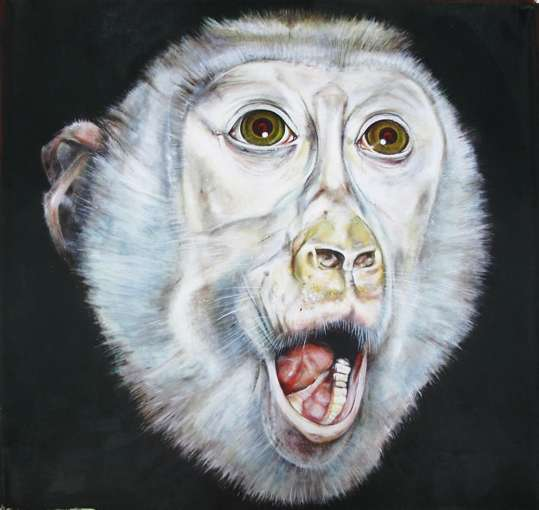 Anatomical Monkey Art