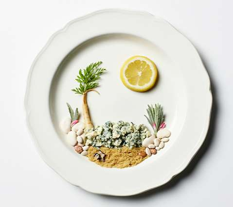 Panoramic Food Portraits