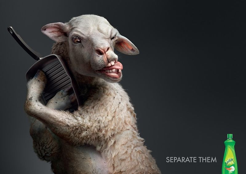 Photoreal Animal Ads