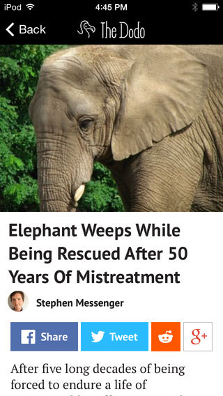 Animal News Apps