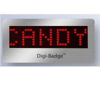 Animated LED Name Tags