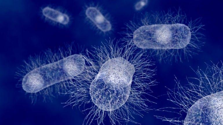 Bacteria-Killing Textiles