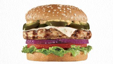 Antibiotic-Free Turkey Burgers
