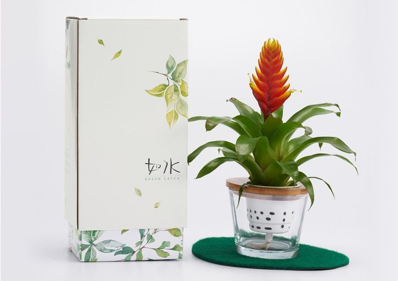 Delicate Aquatic Plant Packaging