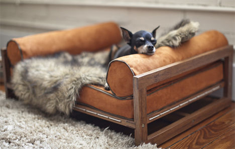 Extravagant Pet Furniture
