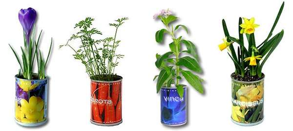 Canned Indoor Gardens