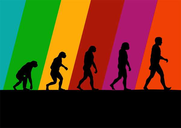 Insightful Evolutionary Artwork