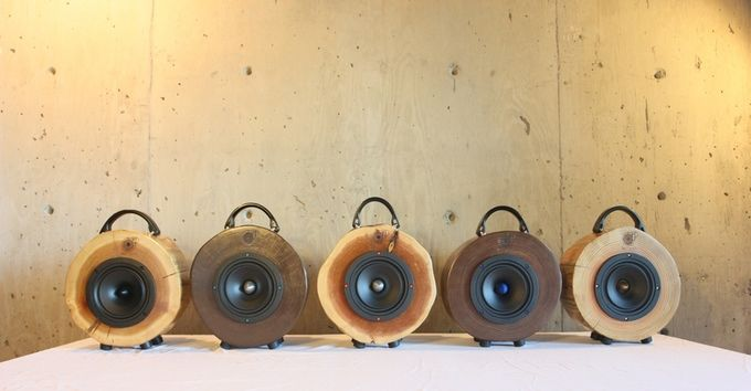 Reclaimed Wood Speakers