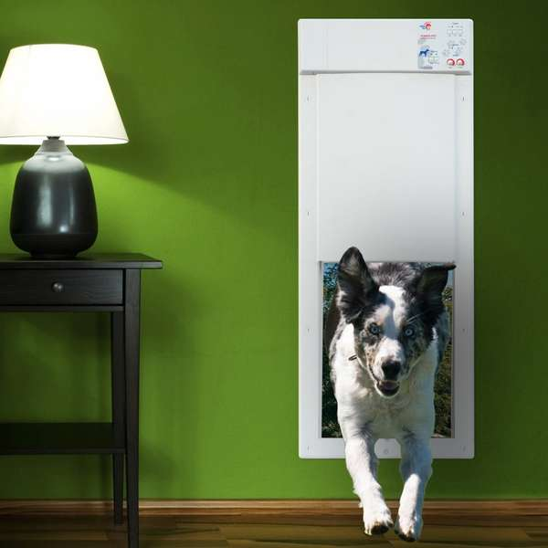 Electronically Automated Doggy Doors