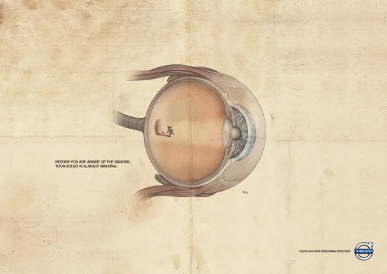 Anatomical Road Danger Ads