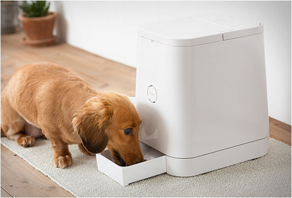 Portion-Controlling Pet Feeders