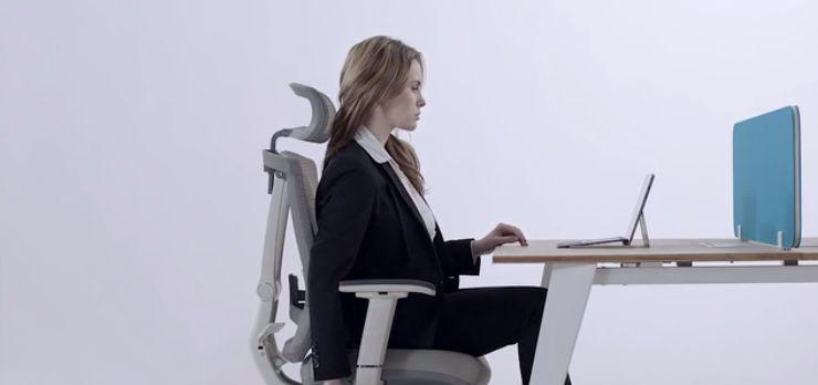 Elegant Ergonomic Chairs : ergonomic chair