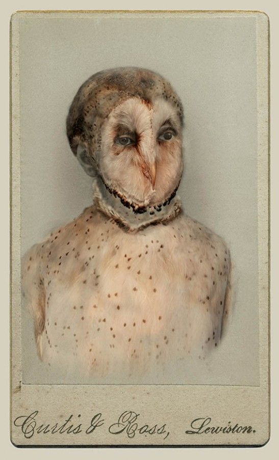 Vintage Humanimal Portraits