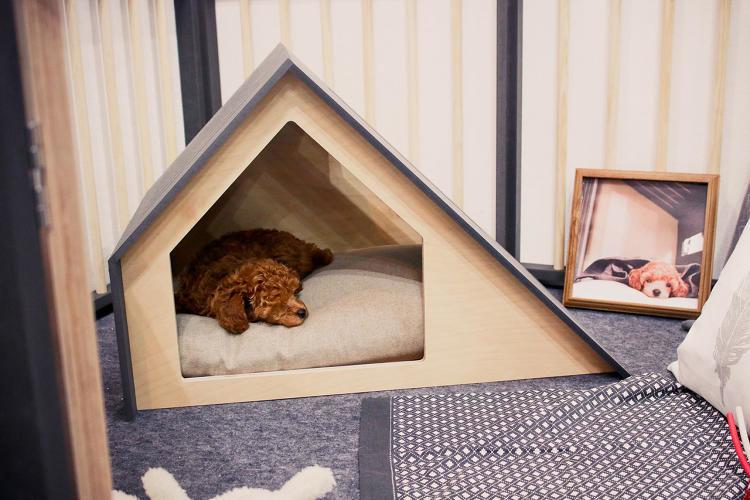 Contemporary Dog Houses