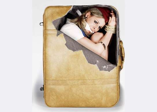 Humorously Devious Luggage Decals