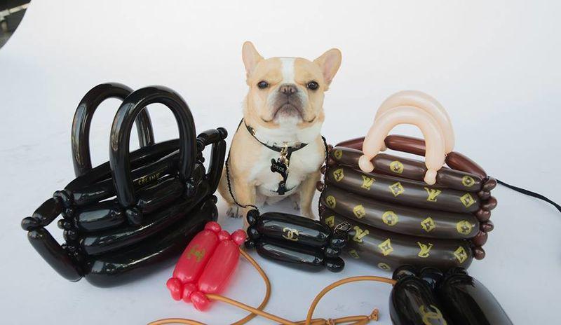 Luxurious Balloon Bags