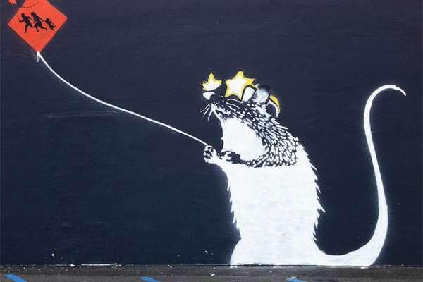 Humanized Rodent Graffiti