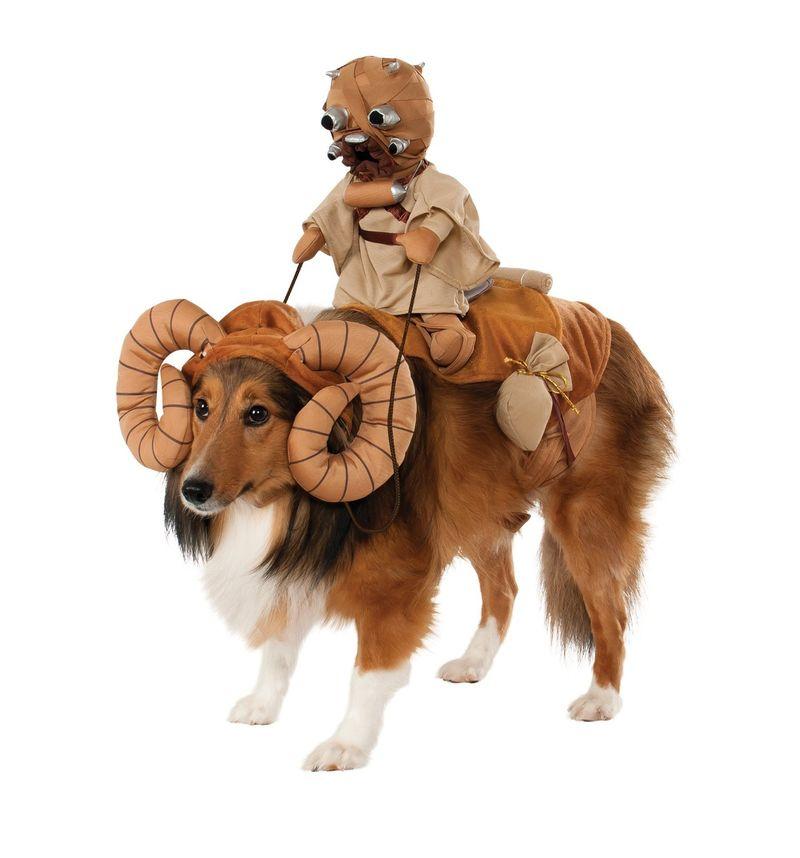 Intergalactic Canine Costumes