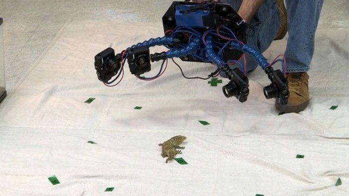 3D Animal-Scanning Cameras
