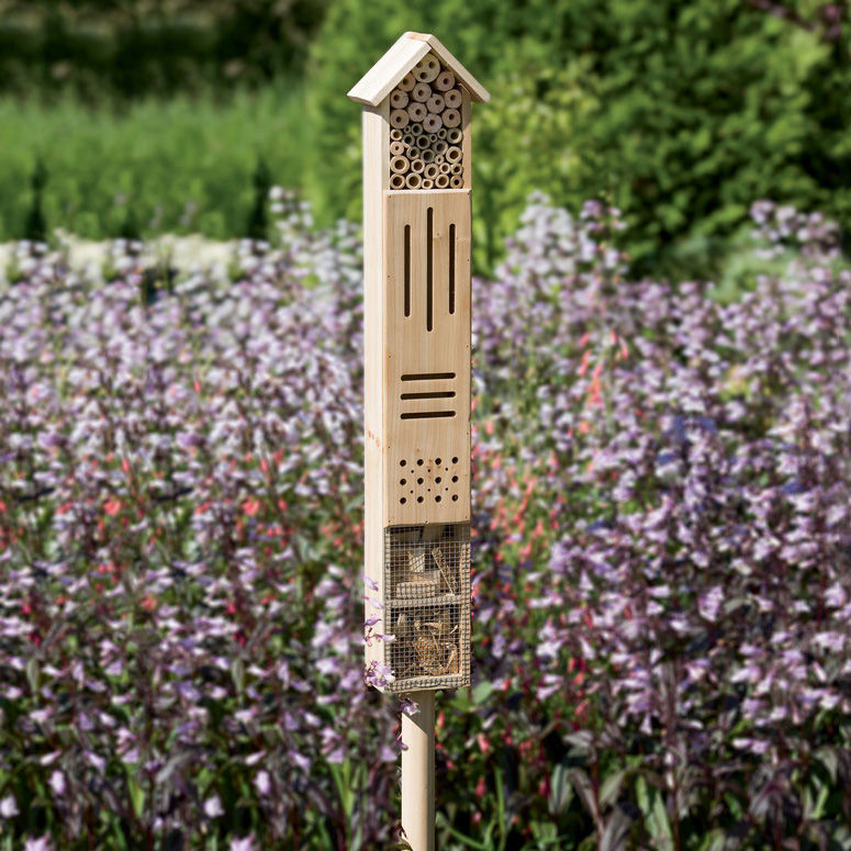 Bug-Friendly Garden Houses