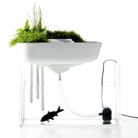 Pet Water Purifiers