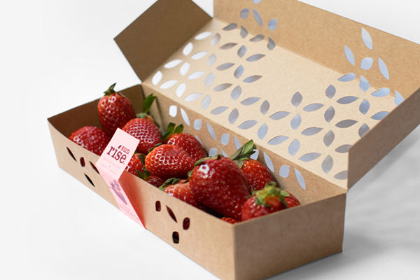 Elegant Berry Boxes