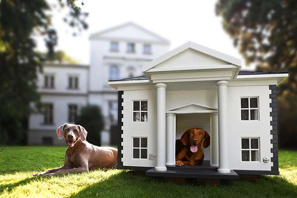 Best Friends Home Dog Mansions