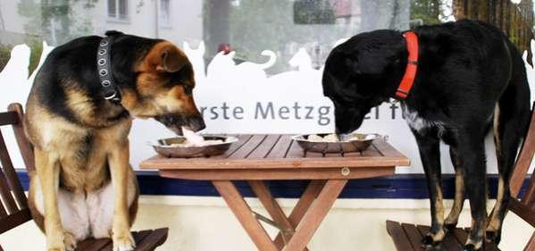 Organic Pet Eateries