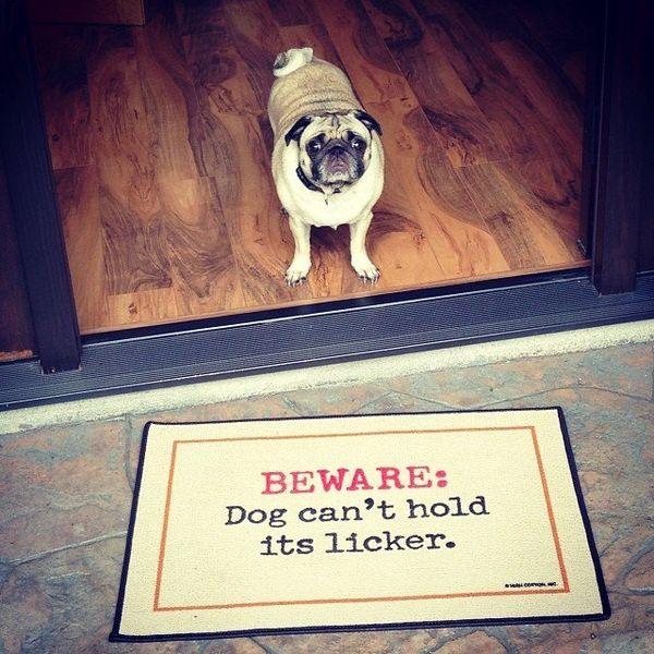 Overexcitable Canine Doormats