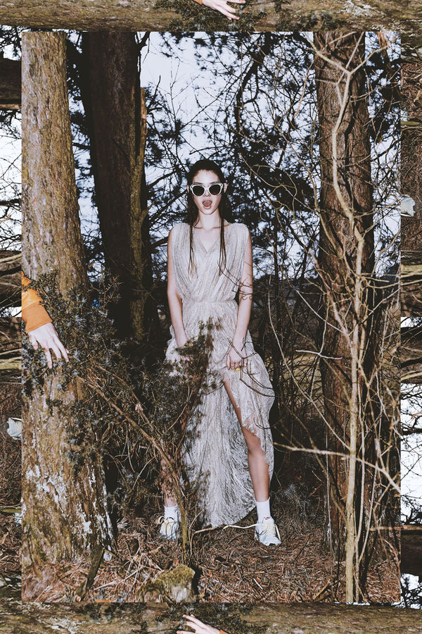 Spine-Chilling Forest Editorials
